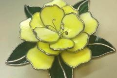 Elise-Andersen-yellow-flower